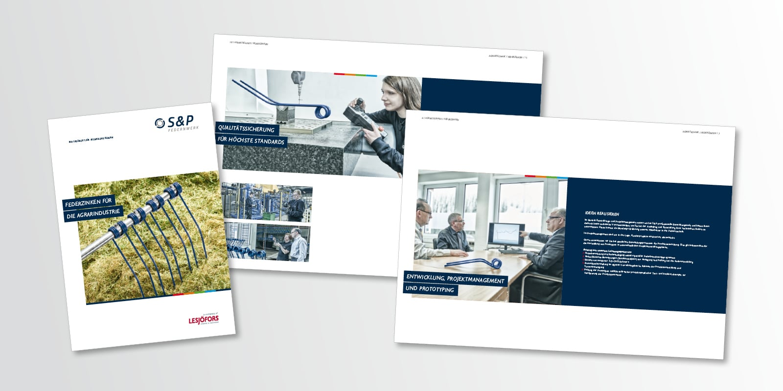 Econ Megaphon Award – Lesjöfors Industrial Springs & Pressings: Print und Digital, Corporate Design