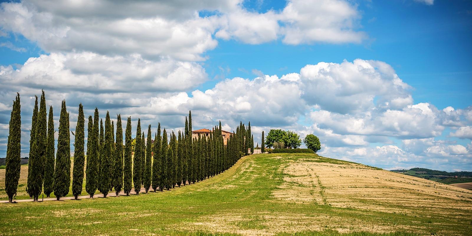 Mille Miglia Toscana